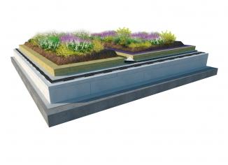 řez zelenou střechou - vizualizace