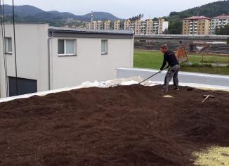 zelená střecha instalace